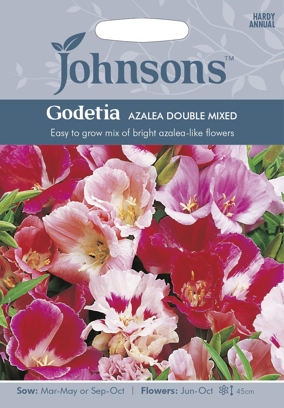 Atlasblomma 'Azalea Double Mixed