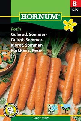 morot-sommar--rotin-1