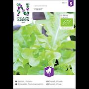 sallat-plock--pleizirhardy-organic-1