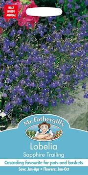 hnglobelia-sapphire-trailing-1