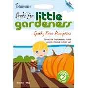 halloweenpumpa-little-gardeners-1
