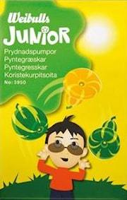 junior-prydnadspumpor-1