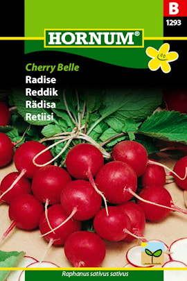 rdisa-cherry-belle-1