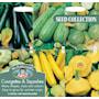 squash-och-zucchini-collection-6-sorter-2
