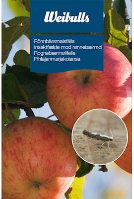 feromonflla-rnnbrsmal-1