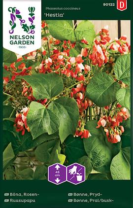 blomsterbna-hestia-lg-1