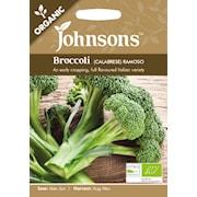 broccoli-ramoso-organic-1