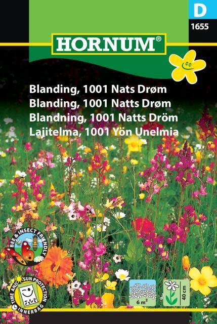 Blomsterblandning, 1001 Natts Dröm