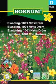blomsterblandning-1001-natts-drm-1