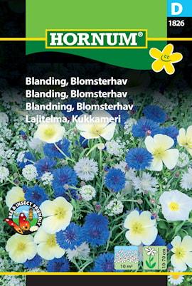 blandning-blomsterhav-1