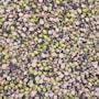sproutly-groddjonas-ekoblandning-500g-4