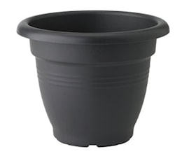 green-basics-campana-dia-25-cm-living-black-1