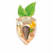 seedcell-single-squash-butternut-1