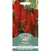 chili-hot-paper-lantern-1