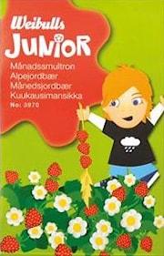 junior-mnadssmultron-1