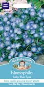 sommarblomma-baby-blue-eyes-1