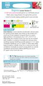 begonia-summer-rainbow-f2-2
