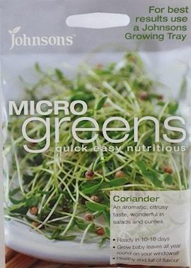 microgreens-koriander-1