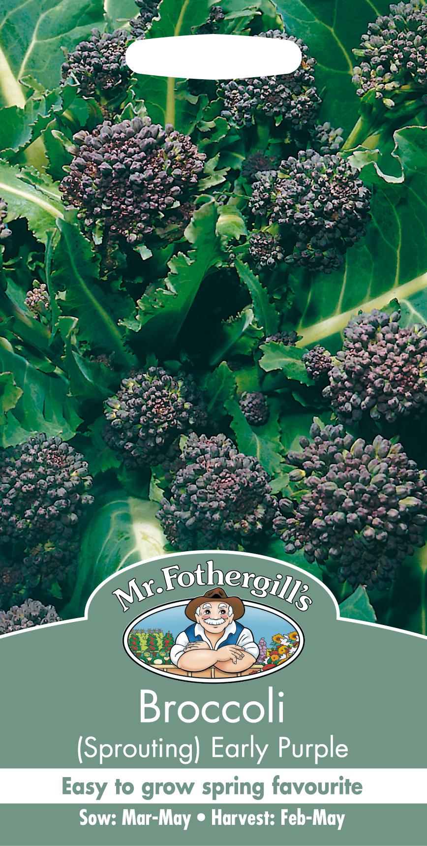Broccoli 'Early Purple