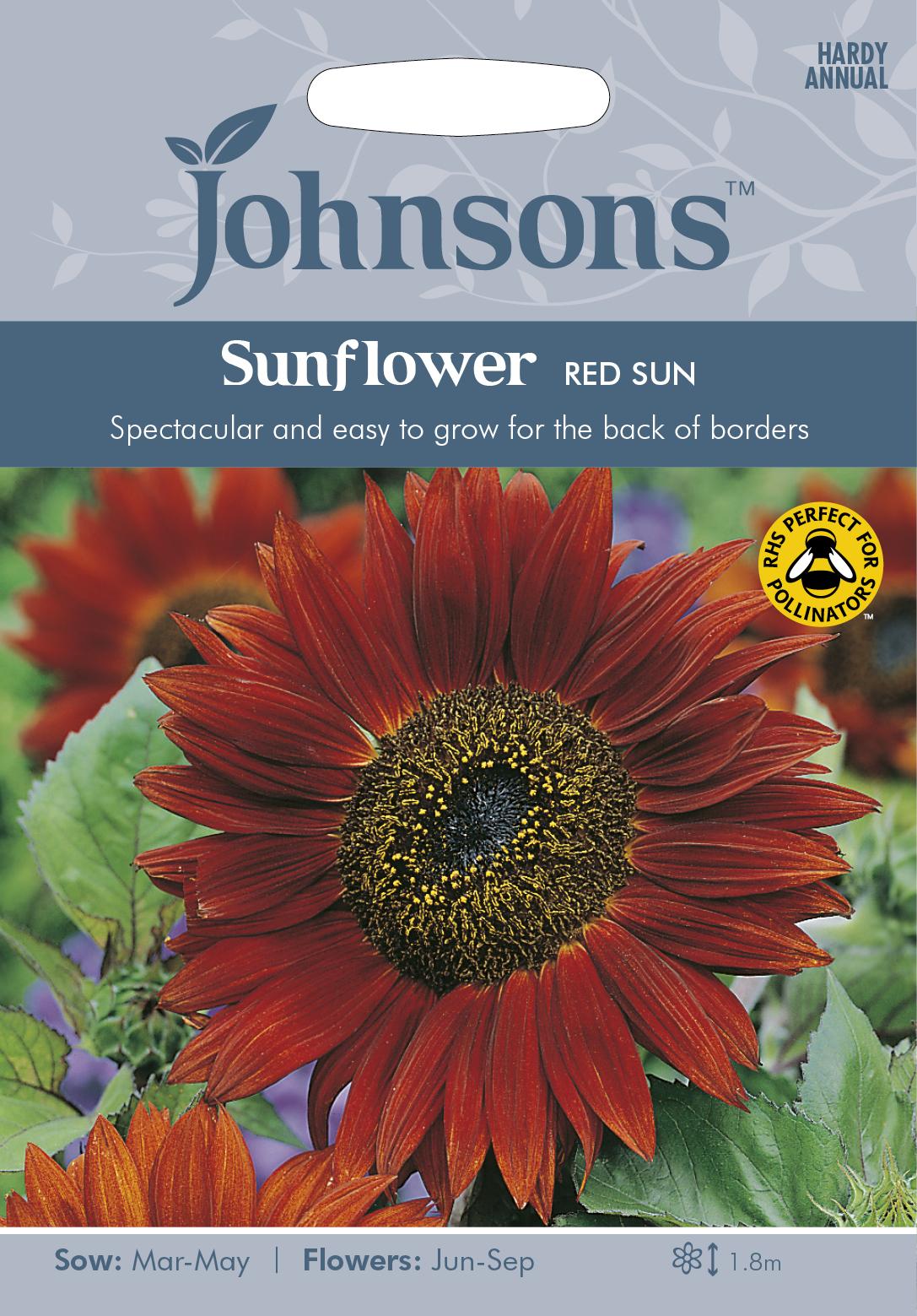 Solros 'Red Sun
