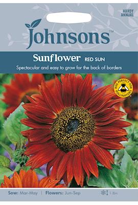 solros-red-sun-1