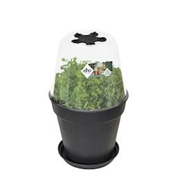 green-basics-grow-house-round-17cm-1