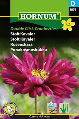 rosenskra-double-click-cranberries-1