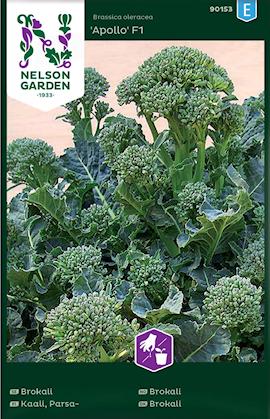 broccoli-apollo-f1-fr-1