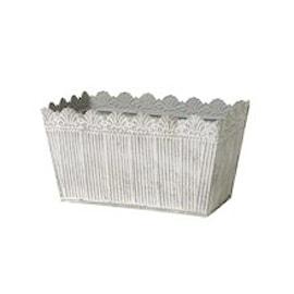 plantskl-judith--rektangulr-liten-1