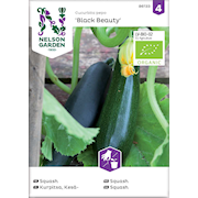 squash-black-beauty-organic-1