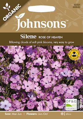 nejlikglim-roses-of-heaven-1