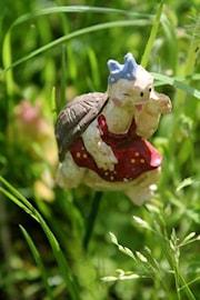trstix-skldpadda-1