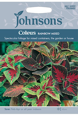 palettblad-rainbow-mixed-1