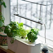 hydroponisk-odling-harvy--3-presentfrp-1