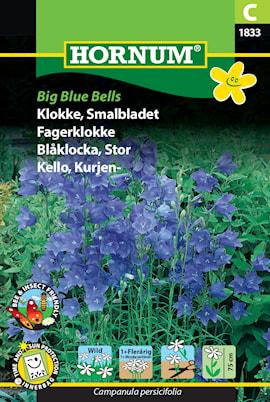 blklocka-big-blue-bells-1