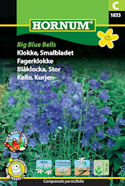 blklocka-big-blue-bells-1