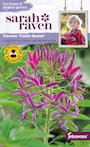paradisblomster-violet-queen-1