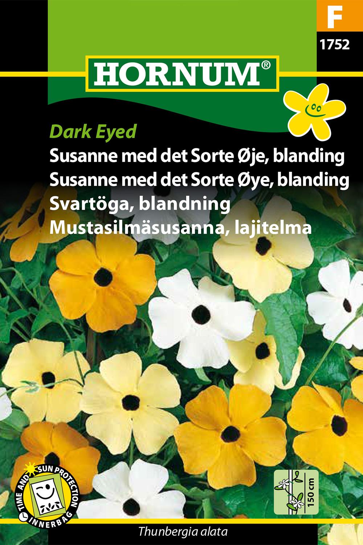 Svartöga, blandning 'Dark eyed