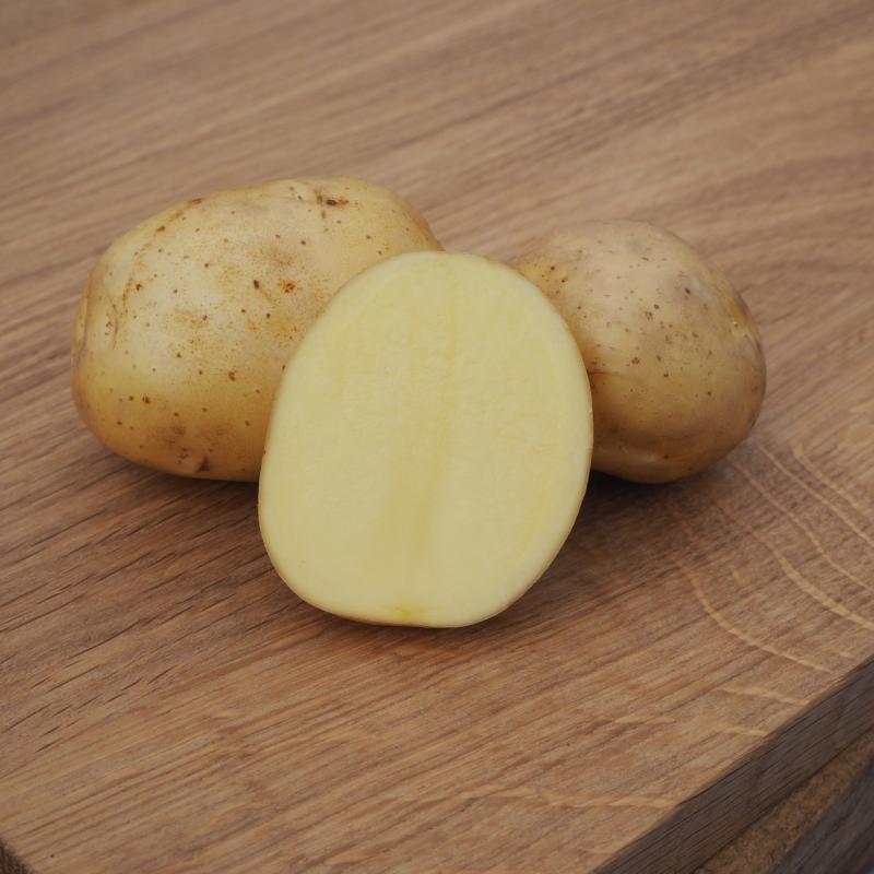 Potatis - Connect 1kg