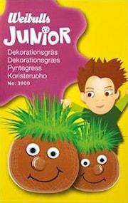 junior-dekorationsgrs-1