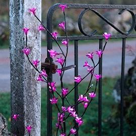 cherry-tree-brunt-dekorationstrd-med-rosa-blo-1