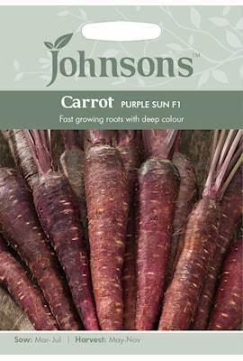 morot-purple-sun-f1-1