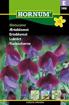 luktrt-matucana-1