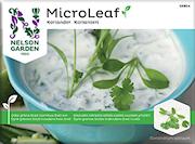 micro-leaf-koriander-1