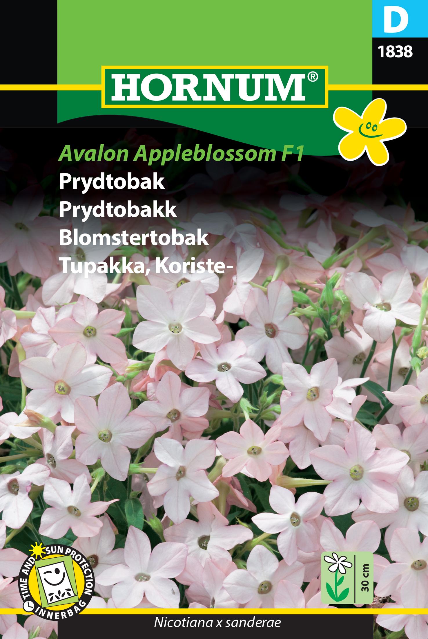 Blomstertobak 'Avalon Appleblossom' F1