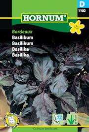 basilika-bordeaux-1