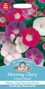 blomman-fr-dagen-choice-mixed-1