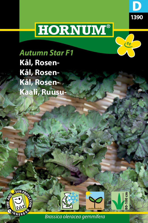 Brysselkål 'Autumn star' F1