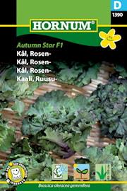 brysselkl-autumn-star-f1-1
