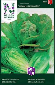 sallat-romersk--lobjoits-green-cos-1